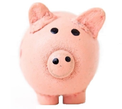 piggy bank image_500x450