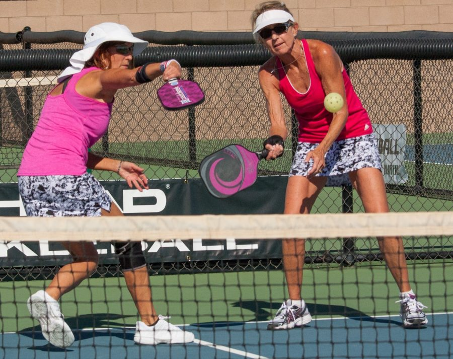 USAPA Action 11 4 17 15 - two women in pink