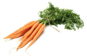 image-of-carrot-for-site-article