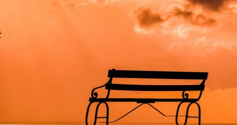 couple-3064048. website.bench