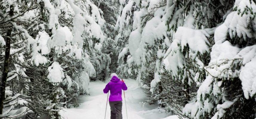 cross cuntry skiing