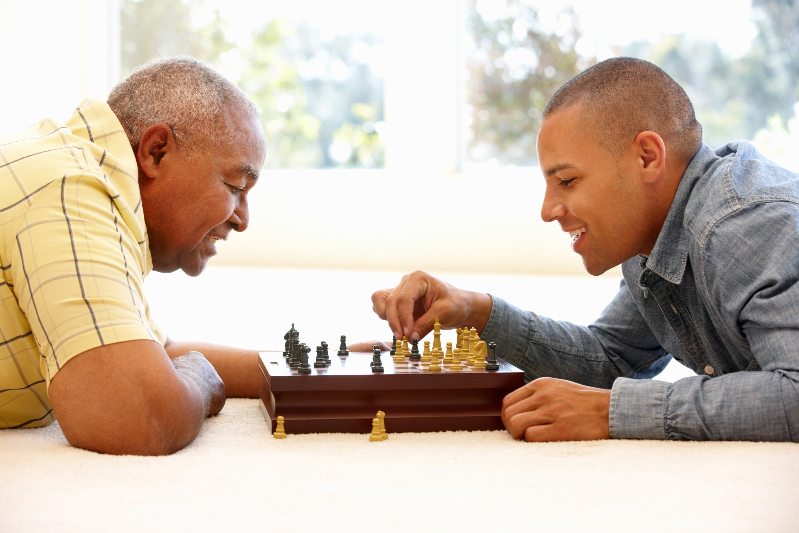 dreamstime_l_55893129. father and adult son playing chess