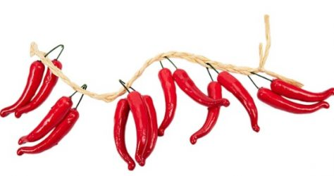 string of hot dried chili peppers