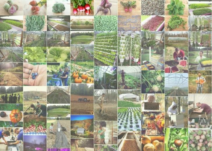 westchester farms